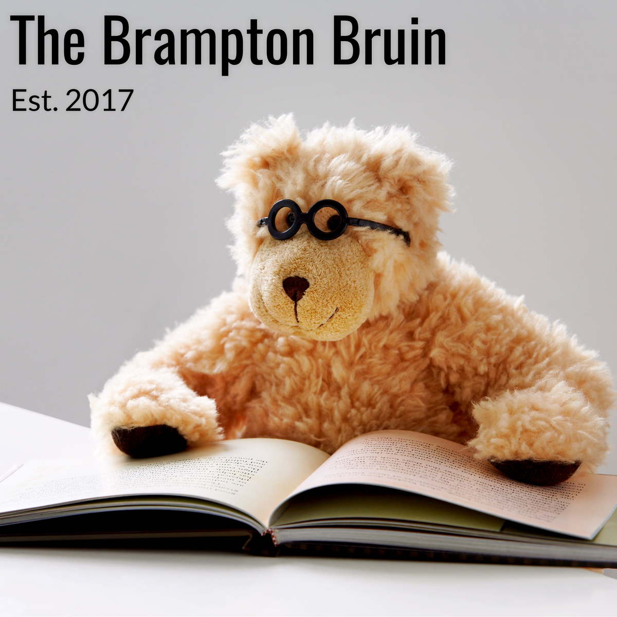 The Brampton Bruin